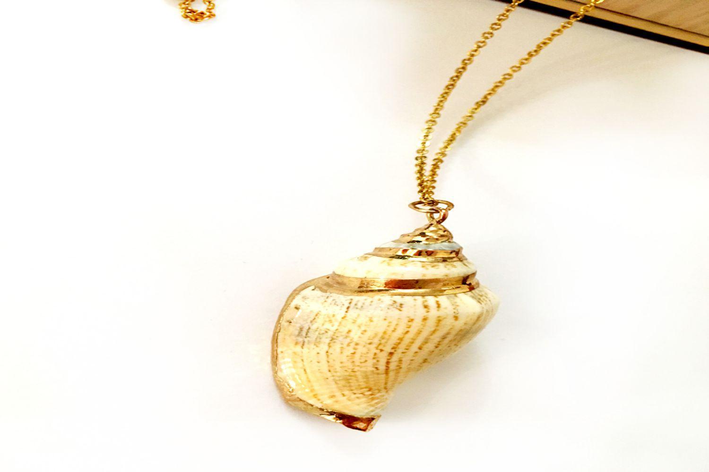 گردنبند رومانتویی دخترانه طرح صدف با زنجیر 37 سانتی دولا استیل pr-ma113 (3)