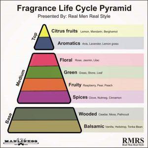 راهنمای خرید عطر و ادکلن مردانه- انواع رایحه عطر و ادکلن